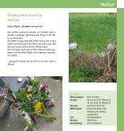 Sommerferien Programm 2013 - Kelsterbach - Seite 7