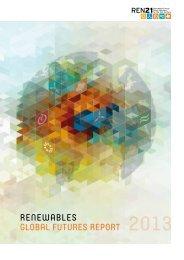 REN21 Renewables Global Futures Report (print version)