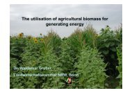 The utilisation of agricultural biomass for generating energy