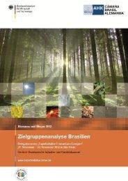 VII. Zielgruppenanalyse Biomasse & Biogas
