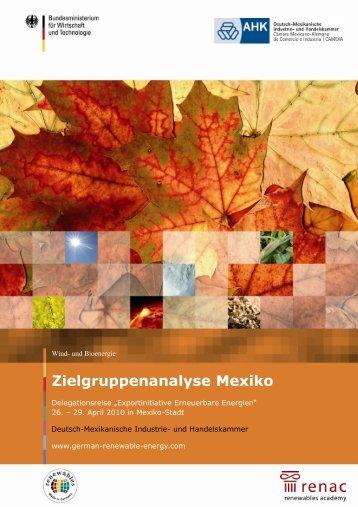Zielgruppenanalyse Mexiko