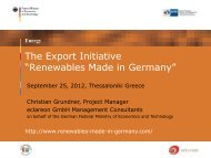 The Renewable Energy Export Initiative