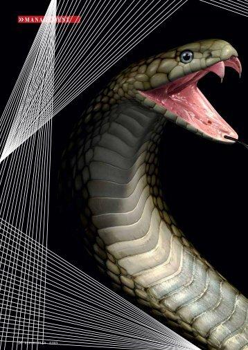 Seite 26-28: Der Kobra-Effekt - Report