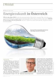 Seite 12-13: E-Wirtschaft im O-Ton - Report