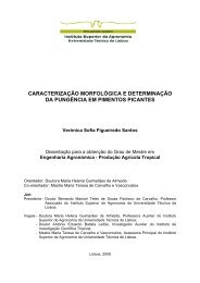 Tese Mestrado Veronica Santos.pdf - UTL Repository ...