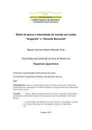 """""""Aragonês"""" e """"Alicante Bouschet"""" - UTL Repository - Universidade ..."""