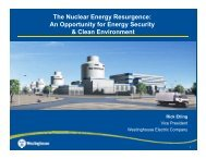 The Nuclear Energy Resurgence - Vice President for Research