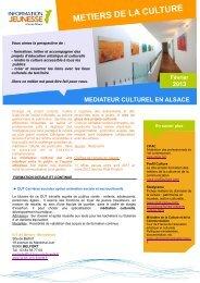 Mediateur Culturel en Alsace.pdf - Réseau Information Jeunesse d ...