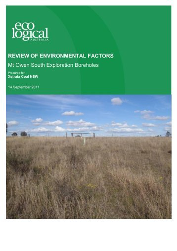 REVIEW OF ENVIRONMENTAL FACTORS Mt Owen South ...