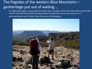 The 'Pagodas' of the Greater Blue Mountains, geoheritage just out of ...
