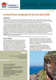 A revised Triassic stratigraphy for the Lorne Basin, NSW