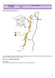 Les vins d'Alsace - Restocours.net