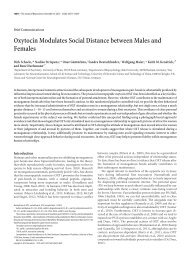Oxytocin Modulates Social Distance between Males and Females
