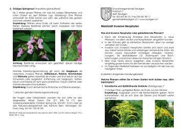 Merkblatt Invasive Neophyten - Gemeinde Reutigen