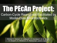Carbon-Cycle Reanalysis Facilitated by Model-Data Ecoinformatics