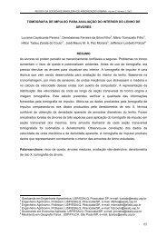 Tomografia de Impulso para Avaliação do Interior do Lenho de ...