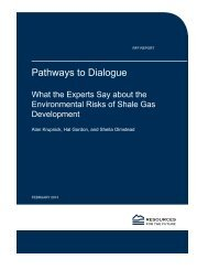Pathways to Dialogue - Resources for the Future