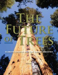 The Future of Trees: Climate Change and the Timber Industry