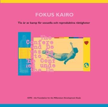 FOKUS KAIRO - Pro Sentret