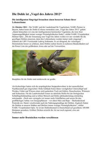 """Die Dohle ist """"Vogel des Jahres 2012"""" - RGZV Iserlohn und ..."""