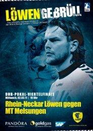 (Saison 2010/2011): MT Melsungen - Rhein-Neckar Löwen