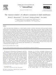 The 'neutron window' of collective excitations in ... - Rheinstaedter.de
