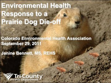 Environmental Health Response to a Prairie Dog Die-off