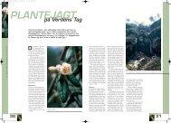 Sikkim & Yunnan ekspeditioner: T. Stein artikel i Grønspiren, In Danish