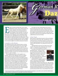 Read Warmbloods Today Magazine 2012 article on German Riding ...