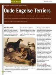 Oude Engelse Terriers - Ria Hörter