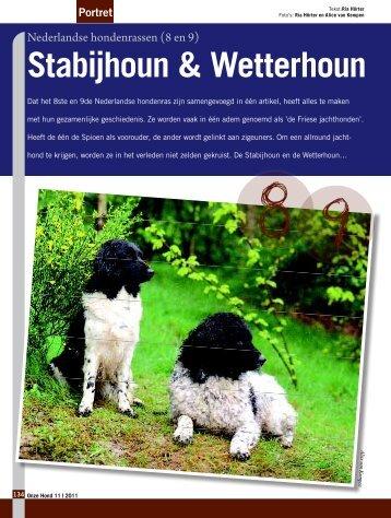 Stabijhoun & Wetterhoun - Ria Hörter