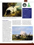 Stabijhoun & Wetterhoun - Ria Hörter - Page 2