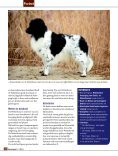 Stabijhoun & Wetterhoun - Ria Hörter - Page 5