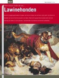 Niets nieuws onder de zon Lawinehonden - Ria Hörter