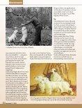 De schepper van de Sealyham Terrier - Ria Hörter - Page 5
