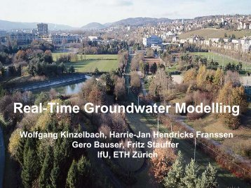 Real-Time Groundwater Modelling - Feflow