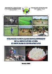 strategie strategie nationale nationale nationale de developpement ...
