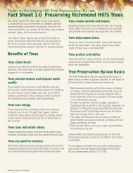 Fact Sheet 1.0 - Preserving Richmond Hill's Trees [PDF] - Town of ...