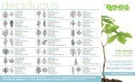 LEAF Backyard Tree Planting Program Brochure