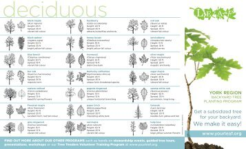 LEAF Backyard Tree Planting Program Brochure