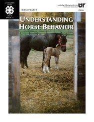 understanding horse behavior understanding horse ... - UT Extension