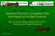 The Economic Impact of Fire Ants on Metroplexes of Texas - eXtension