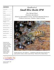 EB 160 Small Hive Beetle - eXtension