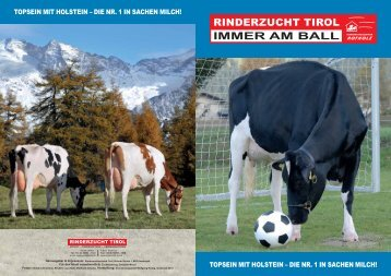 Holstein-Folder laden! - Rinderzucht Tirol