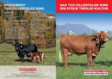 Folder laden! - Rinderzucht Tirol