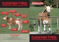 FLECKVIEH TYROL FLECKVIEH TYROL - Rinderzucht Tirol