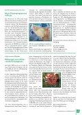 Portal - Deutscher Gewerbeverband e.V. - Page 3