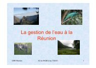 La gestion de l'eau à la Réunion - INBO
