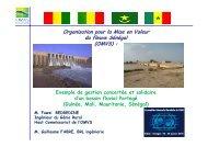 Organisation pour la Mise en Valeur du fleuve Sénégal (OMVS) - INBO