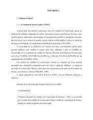 Download - Prefeitura Municipal de Rio Negro